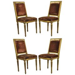 Set of Four Gold Giltwood 19th Century French Louis XVI Style Dining Side Chairs
