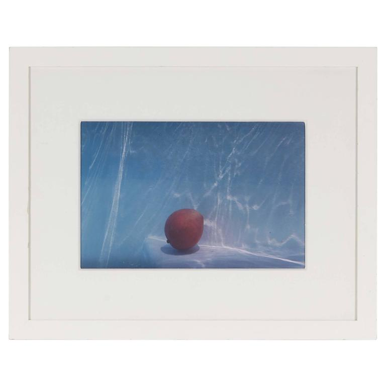 Mango Underwater by Marian Roth