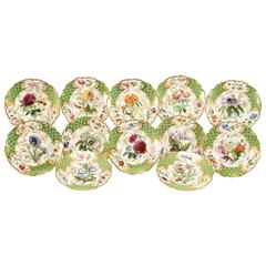 Green and Gold 19th Century English Hand-Painted Botanical Dessert Plates