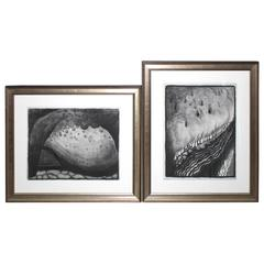 Pair of Georgia O'Keeffe Off-Set Lithographs