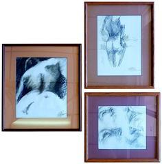 Three Original Sketches by Ed Rosen
