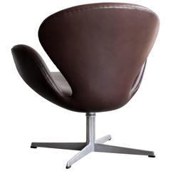 First Series Arne Jacobsen Swan Chair in Dark Chocolate Leather