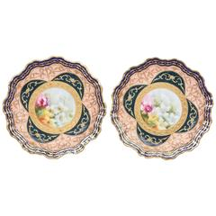 Exquisite and Elaborate Cabinet or Display Plates Pair, Fine Art Gilt Encrusted