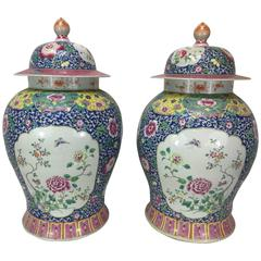 Large Pair of Famille Verte Covered Temple Jars
