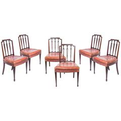 Superb Set of Six 19th Century Neoclassical Style Chairs