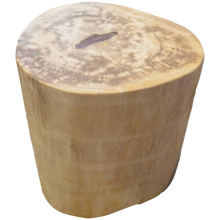 Andrianna Shamaris Petrified Wood with Cracked Resin Drop Side Table