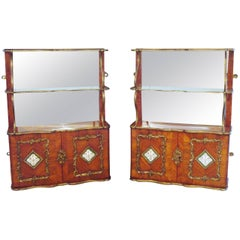 Exceptional 19th Century Pair of English Hanging Wall Cabinets by Town & Emanuel