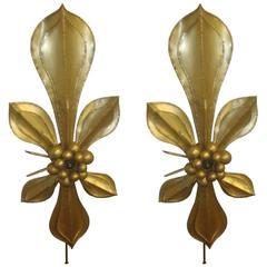 Large Brass Sconces