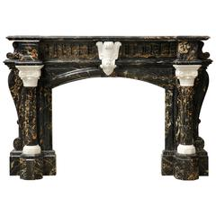 Exceptional Napoleon III Period Fireplace, Portor and Statuary Marble