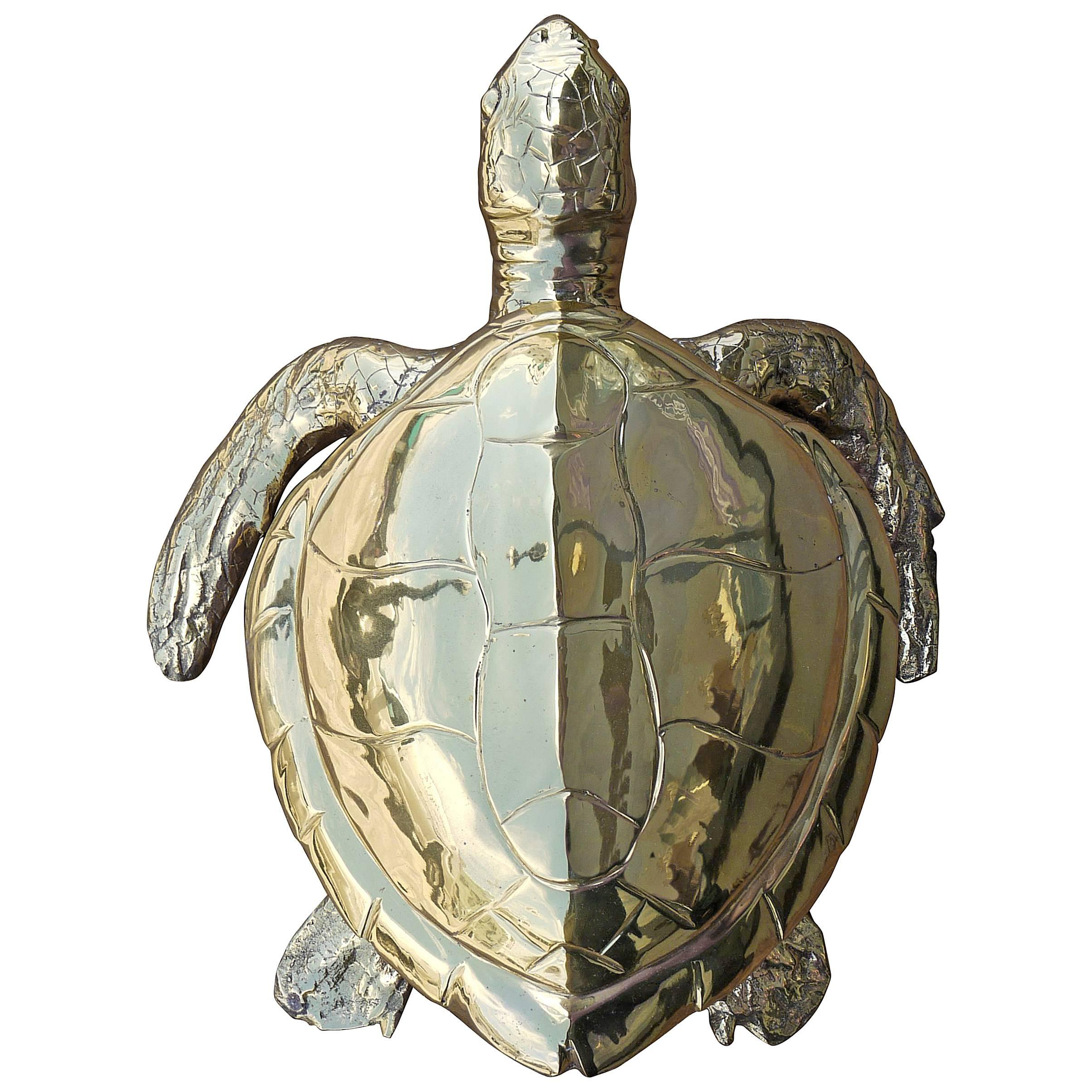 Stunning Large Scale Brass Sea Turtle Box