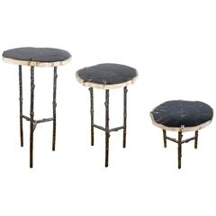 Three Occasional Tables with Top in Petrified Wood