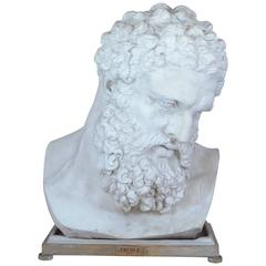 Ercole from the Farnese Collection, Plaster Bust, 20th Century
