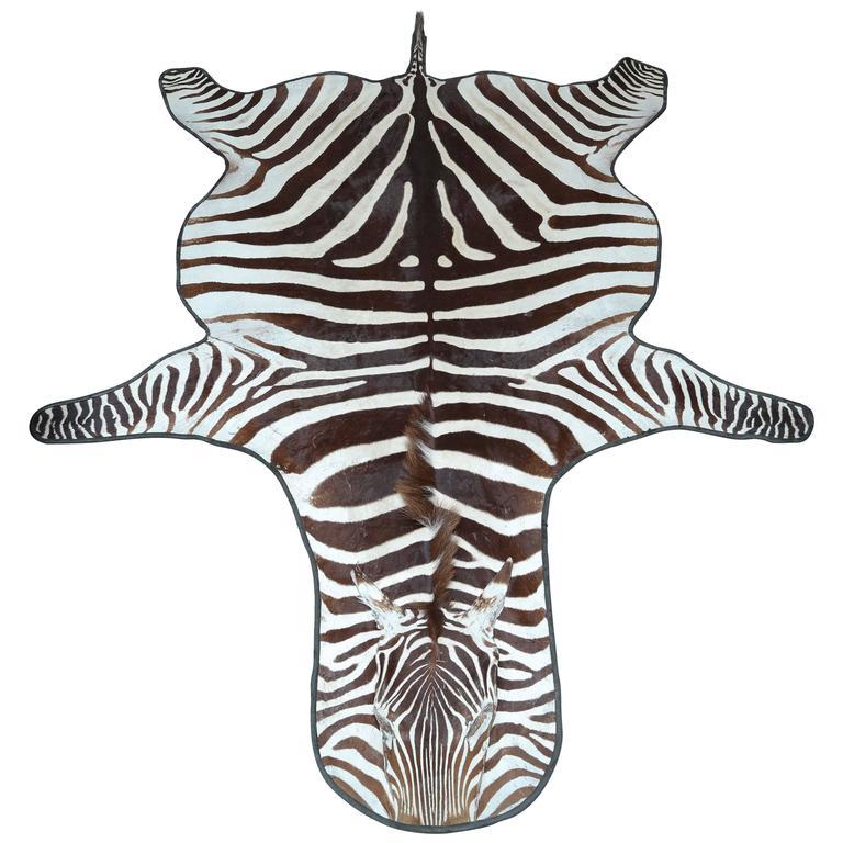 Genuine Zebra Skin Rug At 1stdibs