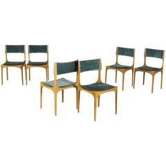 Six Chairs by Giuseppe Gibelli for Sormani, Beech Velvet Vintage, Italy, 1960s