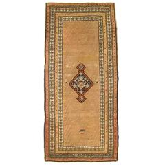 Antique N.W. Persia Decorative Oriental Carpet, Small Runner Size in Earth Tones