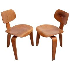 Rare Pair of Early SE42 Egon Eiermann Plywood Chairs, Germany, 1950s