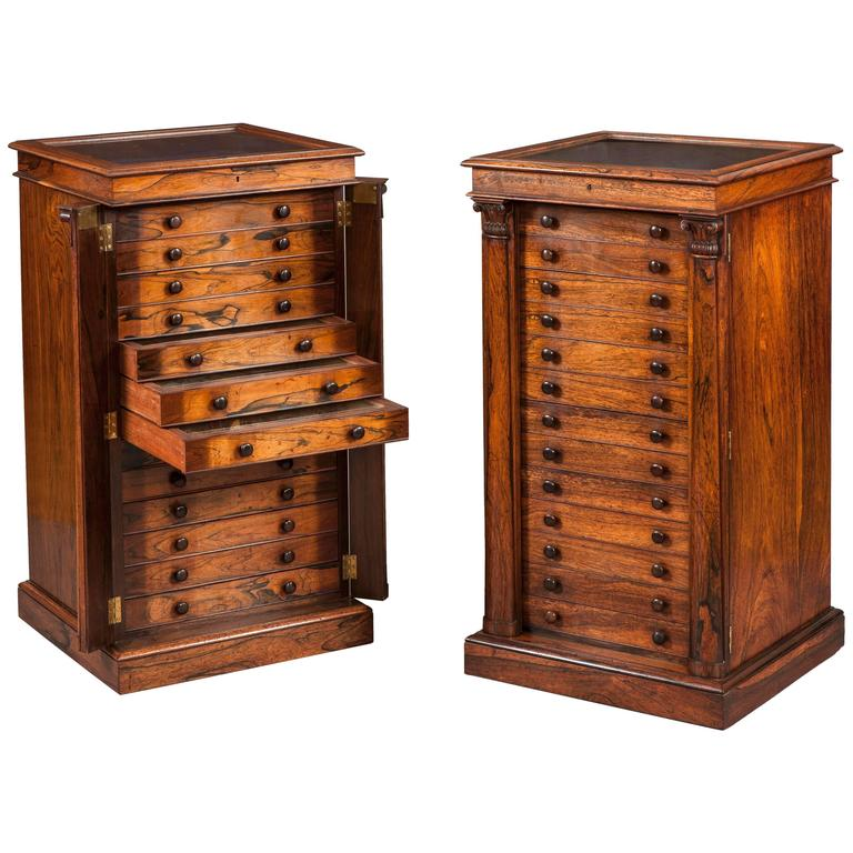 pair of english collectors specimen cabinets with butterflies and