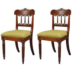 Pair of William IV Burr Oak Side Chairs