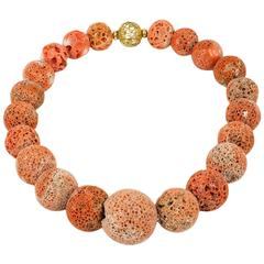 Coral Madrepora Necklace with Gold