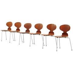 Set of Six Teak Ant Dining Chairs 3100 by Arne Jacobsen for Fritz Hansen