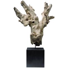 Old Driftwood Mounted Sculpture
