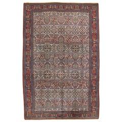 Antique Joshagan Carpet