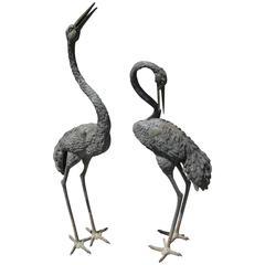 Pair of Bronze Garden Sculpture Herons