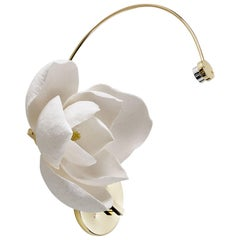 Lure Sconce in Polished Brass by Pelle