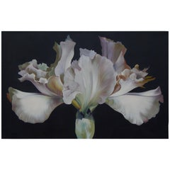 Lowell Nesbitt Oil Painting - Iris on Dark Grey, 1968