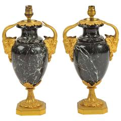 Pair of 19th Century Marble Vases/Lamps