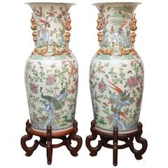 "Pair of Chinese ""Palace"" Vases"