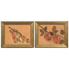 Pair of Framed Fruit Paintings, circa 1930s