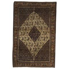 Persian Rugs, Antique Senneh Carpet from Iran
