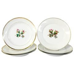 20th Century French Limoges Salad/Dessert Plates S/6 By, Haviland & Co.
