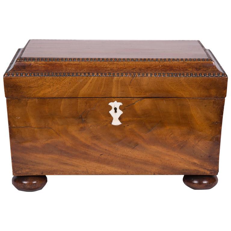 Early 19th Century George IV Mahogany Double-Bowl Tea Caddy