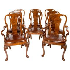 Fine Set of Eight Burr Walnut Queen Anne Style Dining Chairs