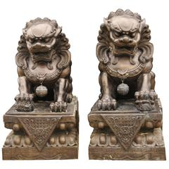 Pair of Extra Large Bronze Chinese Foo Dogs Keiloon Fu Temple Statue