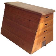 Danish Mid-Century Industrial Gym Box Vault