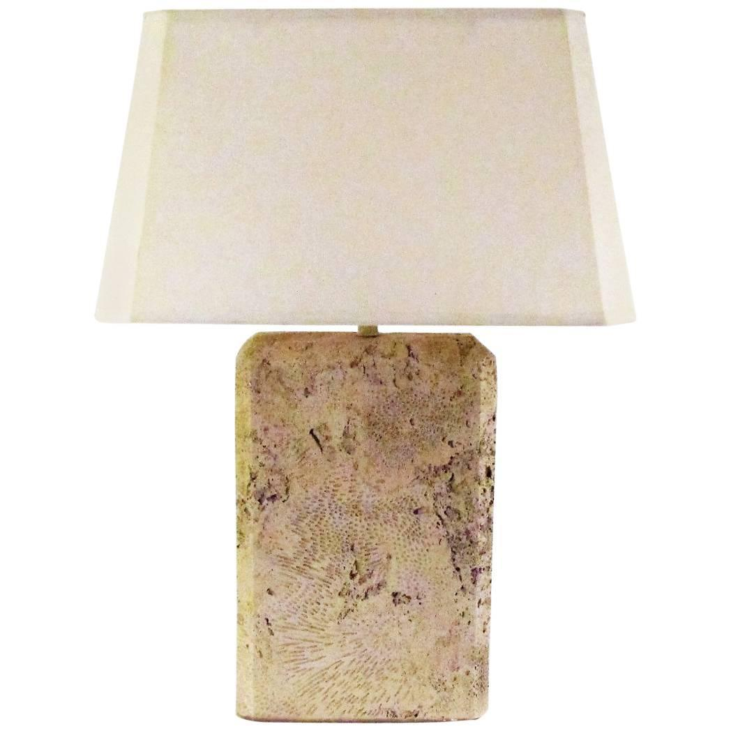 Monumental Fossilized Coral Table Lamp At 1stdibs