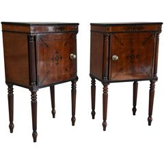 Elegant Pair of Excellent Quality Regency Mahogany Bedside Cabinets