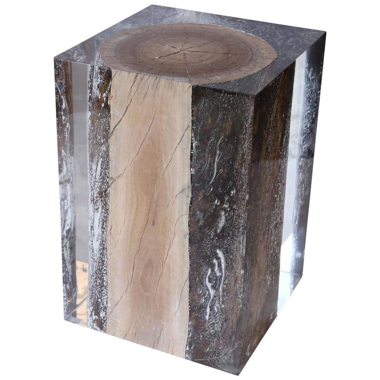 Acrylic Glass And Driftwood Nilleq Side Table And Stool At