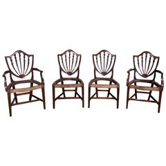 American Hepplewhite Mahogany Shield Back Dining Room Chairs , Circa 1820