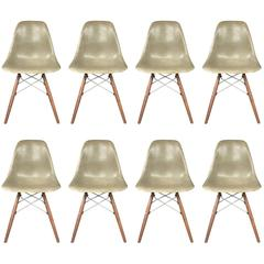 Eight Herman Miller Eames Dining Chairs in Raw Umber