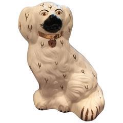 Beautiful Staffordshire Dog