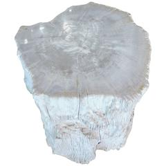 Polished Petrified Wood Side Table