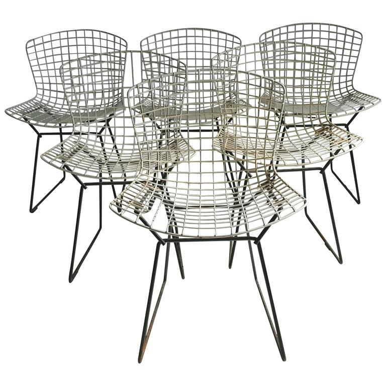 Classic Modernist Wire Bertoia Six Side Chairs Harry Bertoia for Knoll 1