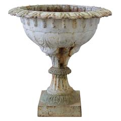 19th Century French Scalloped Rim Urn