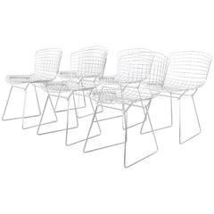 Set of Six Wire Chairs by Harry Bertoia for Knoll International De Coene