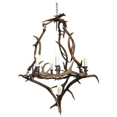 18th Century Bavarian Antler Chandelier Found in Germany