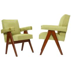 "Set of Two ""Senate-Committee Chairs"" Kiwy"